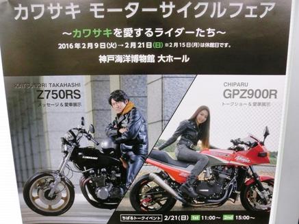CIMG9655.JPG